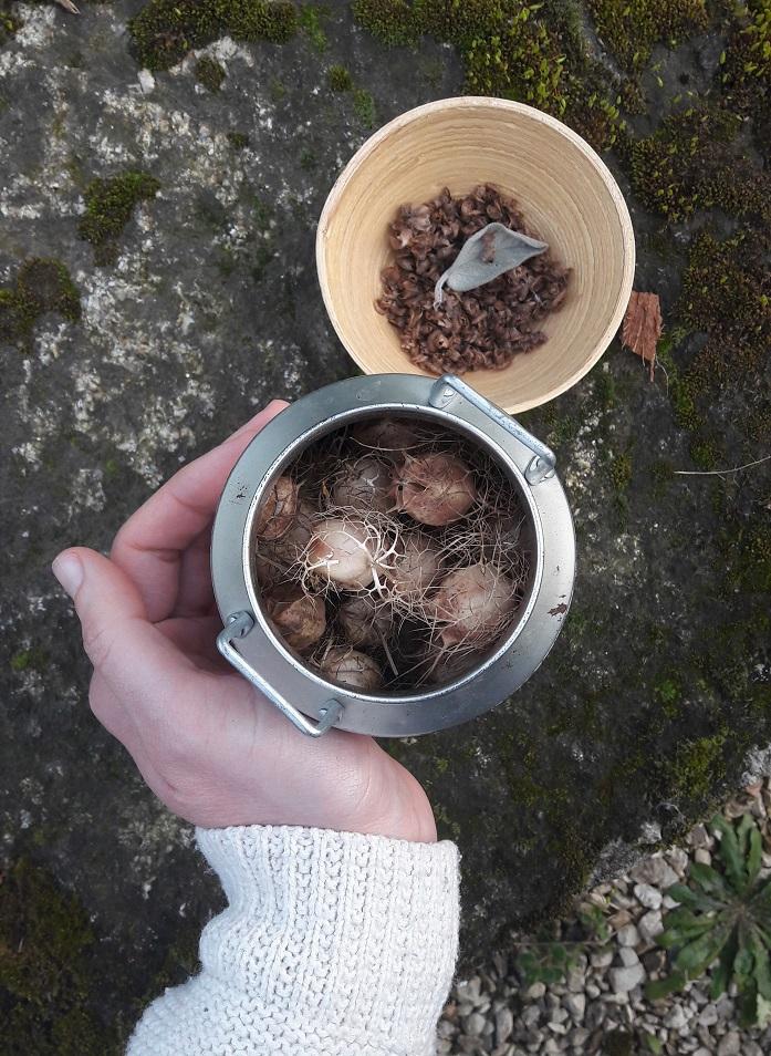 Récolter les graines pour les partager